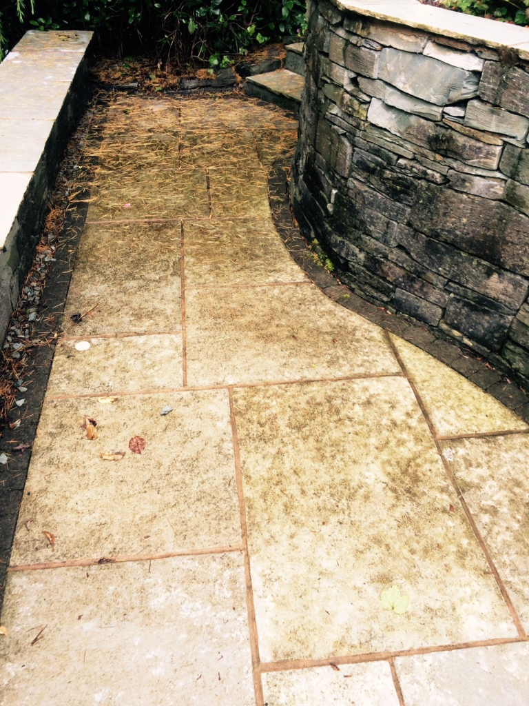 Indian Limestone Patio Before Cleaning